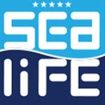 sealife-family-resort-hotel-kullanici-yorumlari